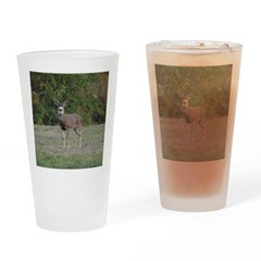 Four Point Buck Drinking Glass