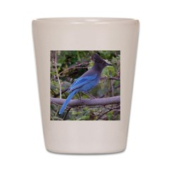 Steller's Jay on Branch Shot Glass
