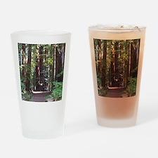 Redwood Trail Drinking Glass