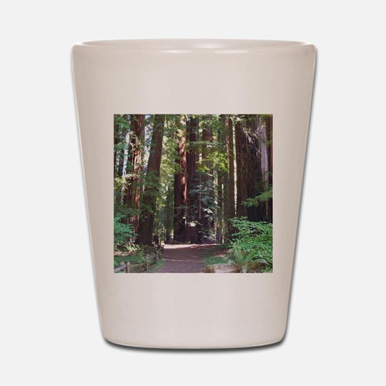 Redwood Trail Shot Glass