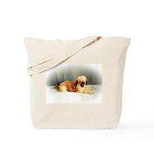 BRIARD GOODIES Tote Bag