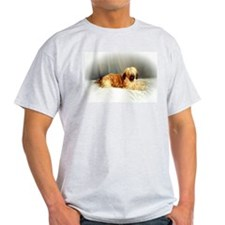 BRIARD GOODIES Ash Grey T-Shirt