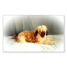 BRIARD GOODIES Rectangle Decal