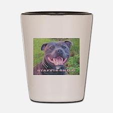 Unique Bull dog Shot Glass
