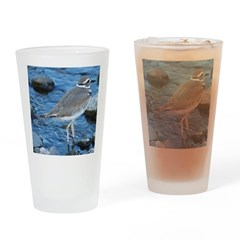 Killdeer (Single) Drinking Glass