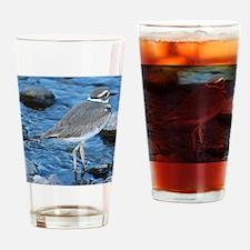 Killdeer (Single) Drinking Glass
