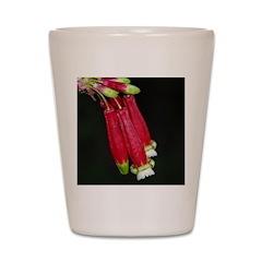 Flaming Firecracker Flowers Shot Glass