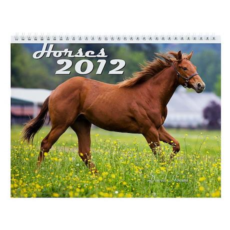 Horses 2013 Wall Calendar