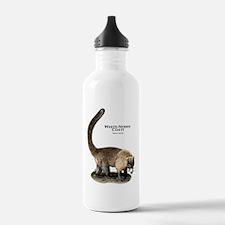 White-Nosed Coati or Coatimun Water Bottle