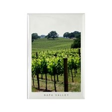 Napa Vineyard, Spring Rectangle Magnet