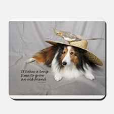 Old Friends Mousepad