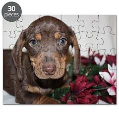 Mini Dachshund Puppy Puzzle