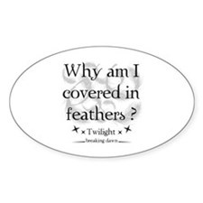 Why am I covered in feathers? Decal
