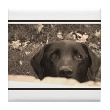 Black Labrador Tile Coaster