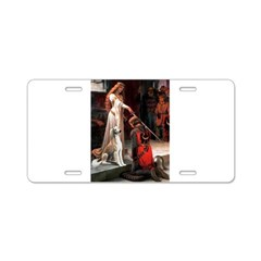 Accolade / Saluki Aluminum License Plate