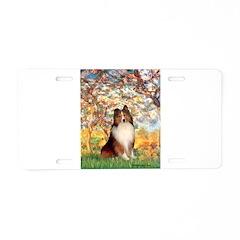 Spring / Sheltie (#1) Aluminum License Plate