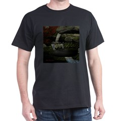 Rocky Falls T-Shirt