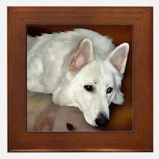 White German Shepherd Dog Framed Tile