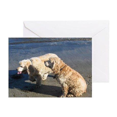 Pickles and Skippy's Greeting Cards (Pk of 10