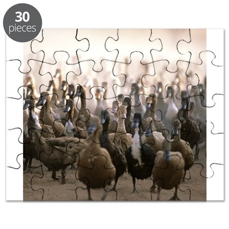Puzzle of ducks