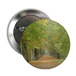 Tree Lane Button