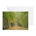 Tree Lane Greeting Cards (Pk of 10)