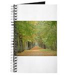 Tree Lane Journal