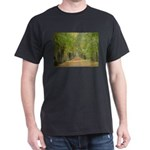 Tree Lane Black T-Shirt