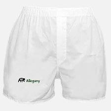 Unique Quaker Boxer Shorts