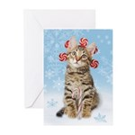 Sweet Christmas Greeting Cards (Pk of 10)