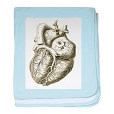 Cute Anatomy heart baby blanket