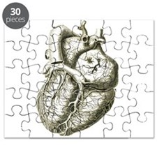 Cute Organizations Puzzle