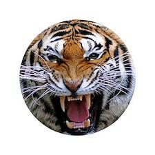 """FIERCE BENGAL TIGER 3.5"""" Button"""