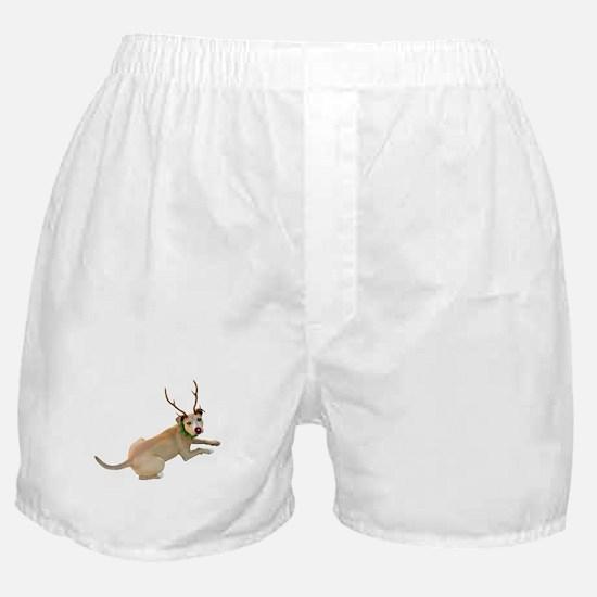 Reindeer Dog Boxer Shorts