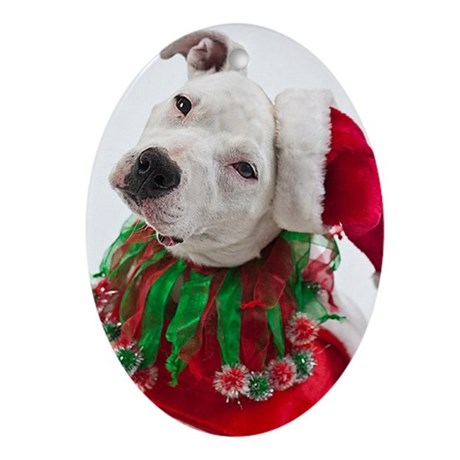 Pit Bull Christmas Ornament (Oval) by tylerdog