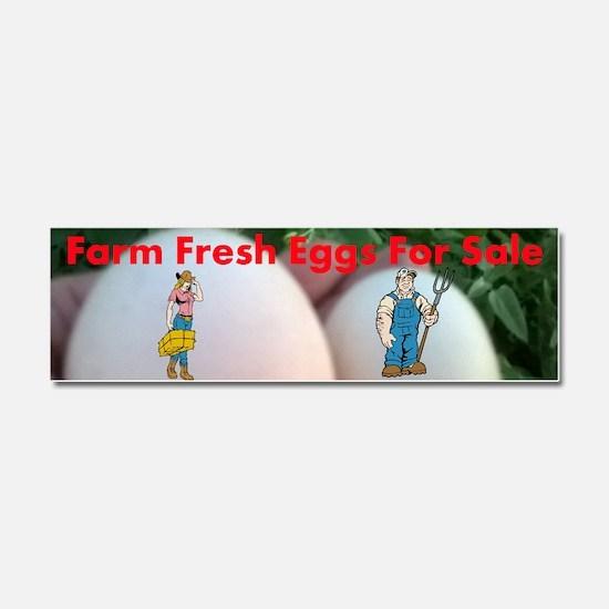 Farm Fresh Eggs For Sale Car Magnet 10 X 3
