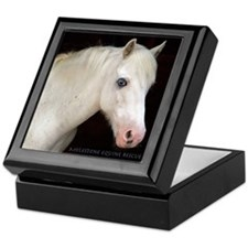Mylestone Keepsake Box featuring Logan