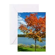 RED FOLIAGE Greeting Card