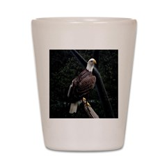 Amazing Eagle Shot Glass