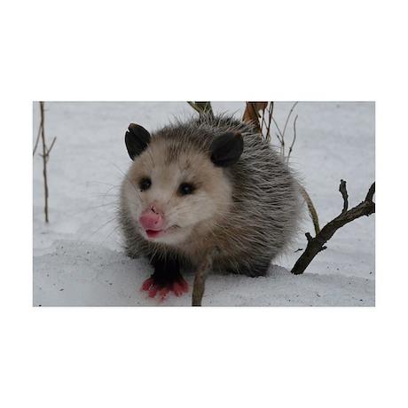 Snow Possum 35x21 Wall Decal