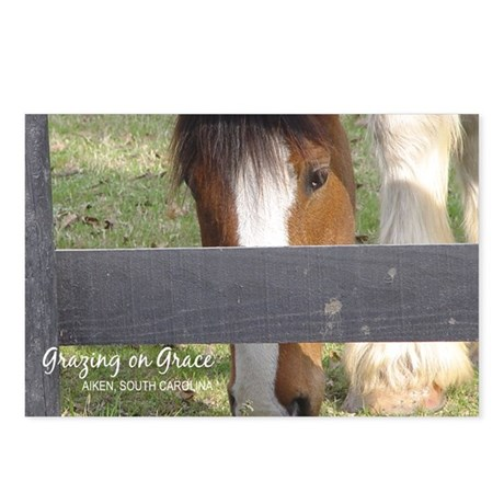 Aiken Postcards: Grazing on Grace (Pkg of 8)