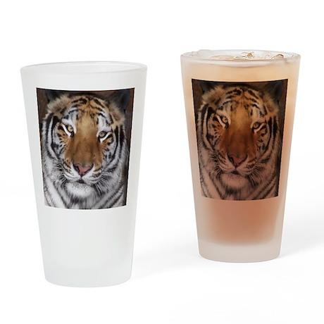 Kumari Fund Drinking Glass