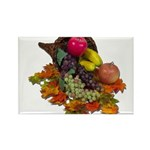 Cornucopia Abundent Fruit Rectangle Magnet