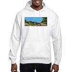 Dirt Road Mountain Path Hooded Sweatshirt