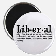 Definition of Liberal Magnet