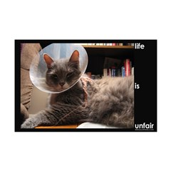 Cat: Life is Unfair (11x17 poster print)
