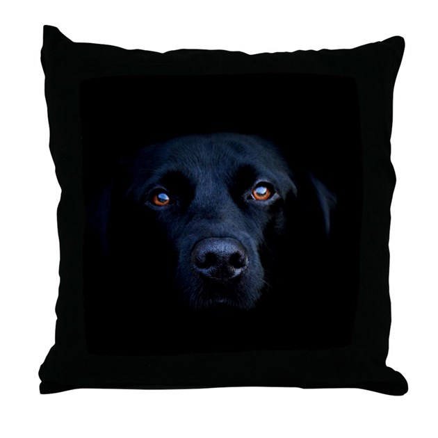 Black Lab Throw Pillow : MIDNIGHT BLACK LAB Throw Pillow by bostonart