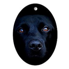 MIDNIGHT BLACK LAB Ornament (Oval)