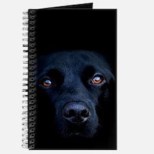 MIDNIGHT BLACK LAB Journal