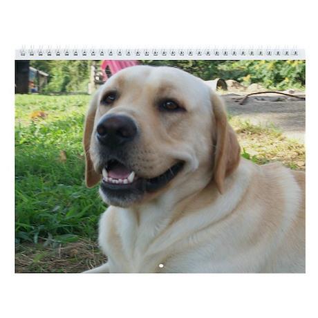"Just Labradors Wall Calendar ""C"""
